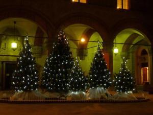 Alberi di Natale in piazza Maggiore