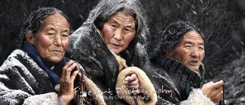 Donne mongole