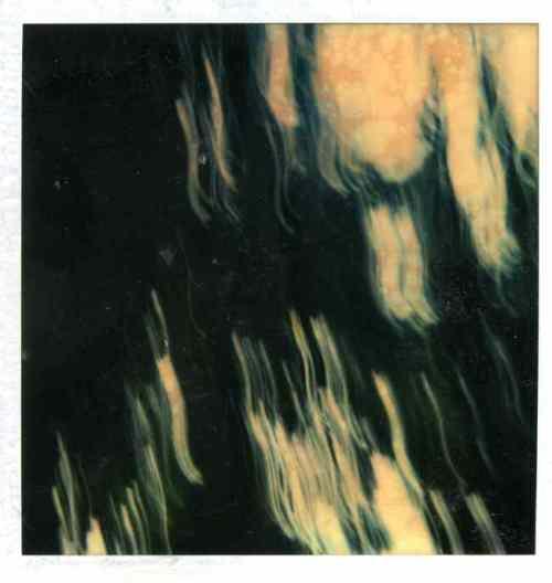 polaroid012