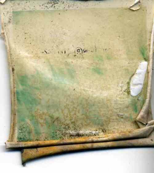 polaroid016