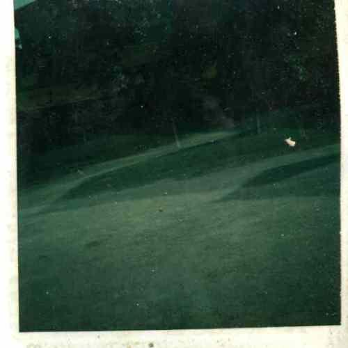 polaroid017