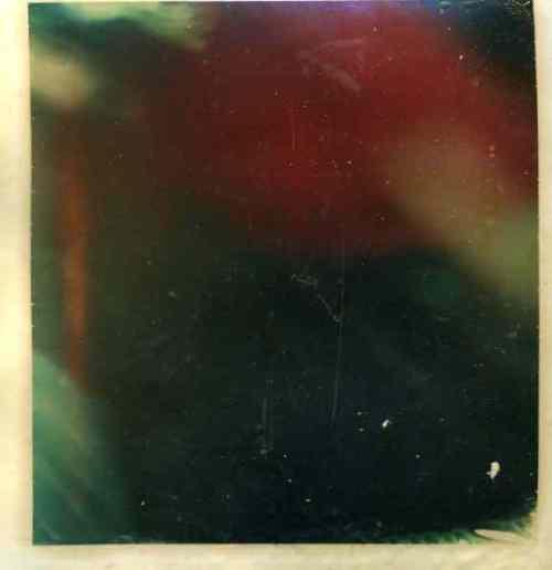 polaroid019