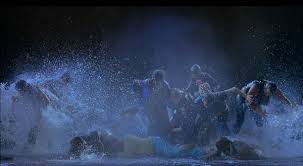 acqua di bill viola