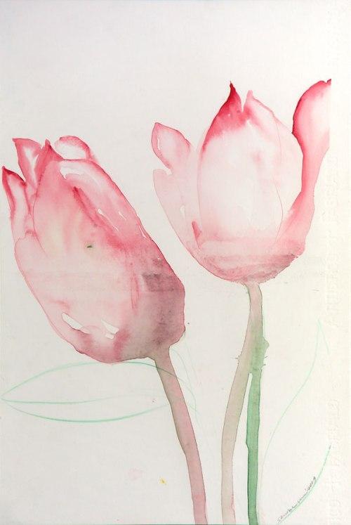 tulipani-2009